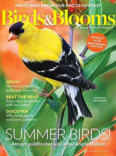 Science & Nature Magazines - Magazine Categories
